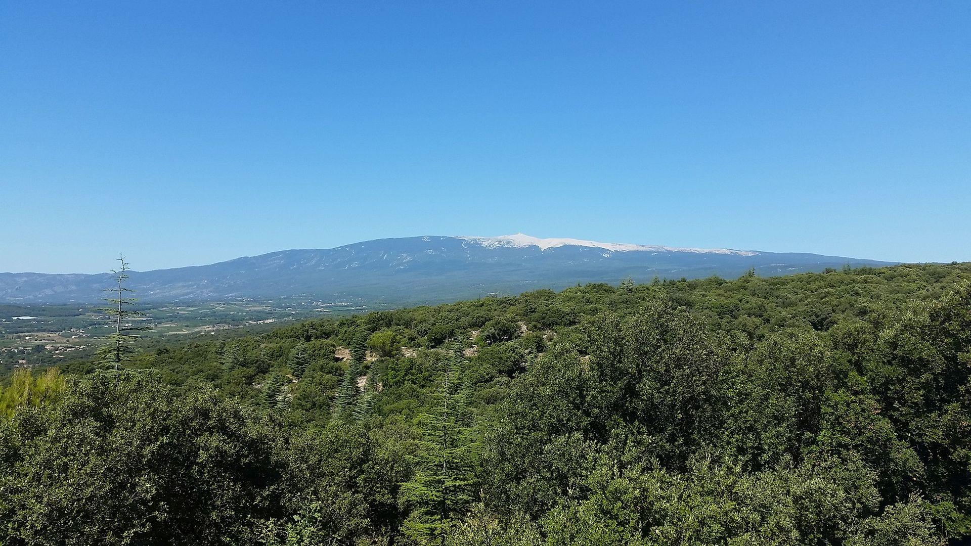 Pamiętniki z wakacji: Monte Ventoux